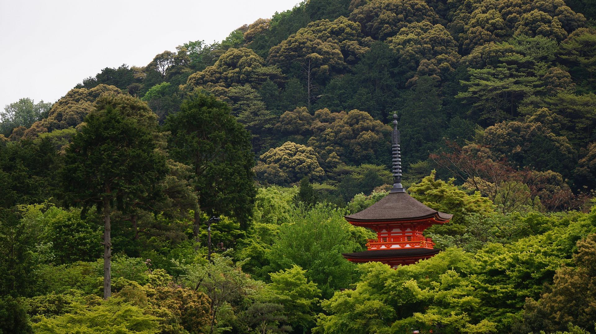 Острова Японии Киото