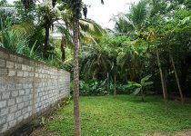 Продажа гостевого доманаШри-Ланке,вблизибазы серферов